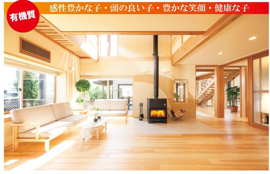 有機質な家と無機質な家、どちらに住みたいですか?